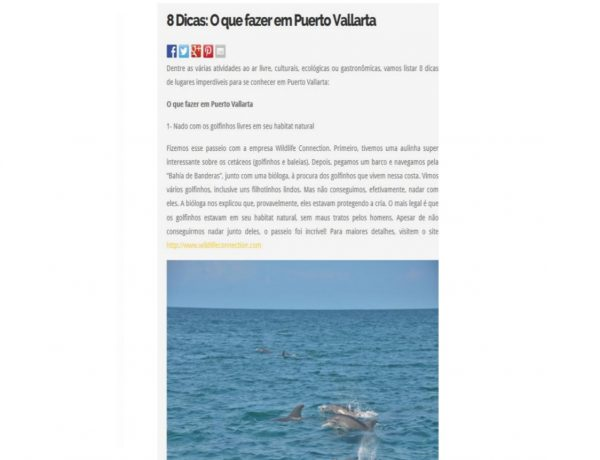Puerto Vallarta – Fantrip – 09.08.2017
